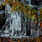 Ice by Charles & Patricia   Harkins ~ Picture Oregon