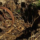Rusty Wheel by vjwriggs
