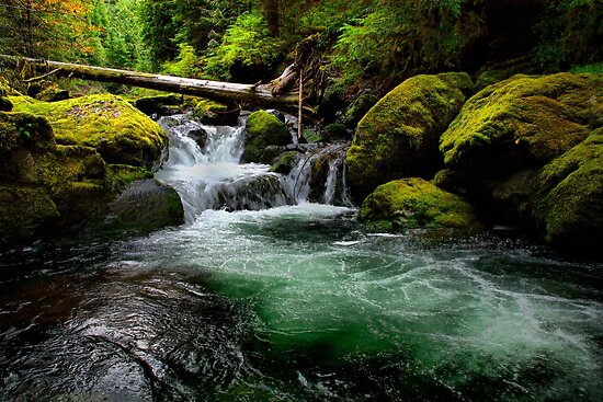 Green Water ~ Wildcat Creek ~ by Charles & Patricia   Harkins ~ Picture Oregon