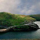 Boscastle by Ian Smith