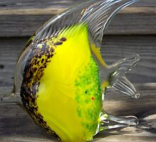 glass fish by tomcat2170