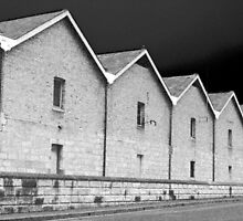 Symmetry in Black and White by Charlie Lawrence