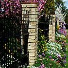 Garden Beauty Toowoomba, Qld, Australia by Sandra  Sengstock-Miller