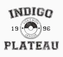 Indigo Plateau - Pokemon League by asticou