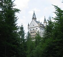 Neuschwanstein castle by charuavi