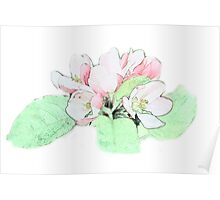 Art style pink apple flower color pencil sketch. floral photo art. Poster
