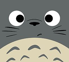 Dubiously Totoro by CanisPicta