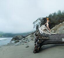 La Push beach by LauraZalenga