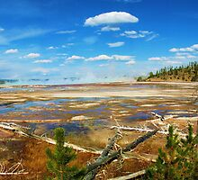 Yellowstone National Park, Wyoming by spanners79