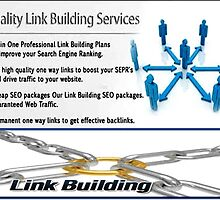 Link Building Packages for Relevant Traffic by Bestseocompanyz