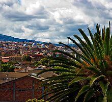 Historical Cuenca, Ecuador by Al Bourassa