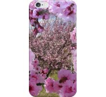 Blossom Beauty iPhone Case/Skin