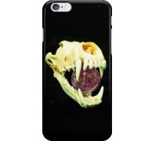 Andalousia iPhone Case/Skin