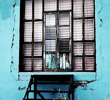 Turquoise Windows by Adrian Figueroa