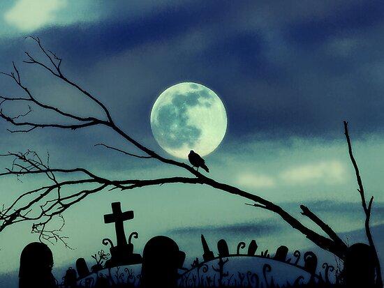 sweet darkness by webgrrl