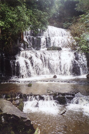 Purakanui Falls - Owaka region South Island by lettie1957