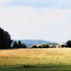 view by katradford