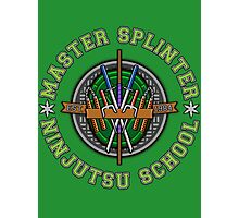 Master Splinter's Ninjutsu School Photographic Print