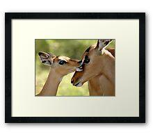 love bite Framed Print