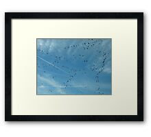 Geese & Contrails Framed Print