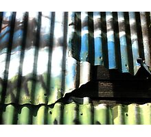 Graffiti Wall 1 Photographic Print