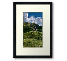 3653 Framed Print