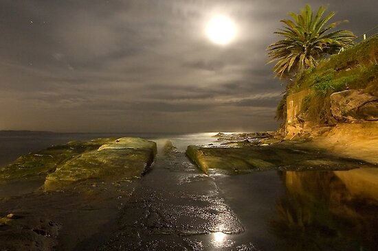 Moonlit path - Cronulla by Daniel  Speranza