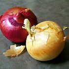 Two Onions by Lee Anne French
