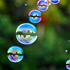 Bubbles by Lee Anne French