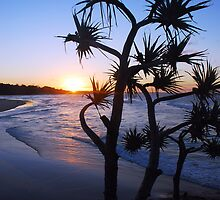 Cylinder Beach, North Stradbroke Island by Clare McClelland