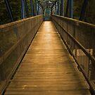 """bridge"" by Steven Schwartz"