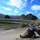 trekking in NZ by Susanne Schmitz