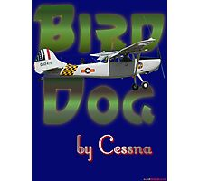 Bird Dog By Cessna Photographic Print