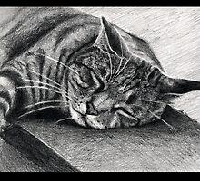 Sunday Snooze by Asia Barsoski