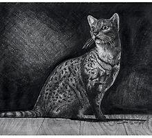 Alert Bengal Cat by Asia Barsoski