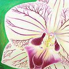 Magenta Orchid by JoanOfArt
