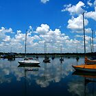 Sailboats in the Sky by Cindi Smith
