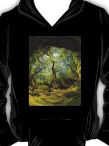 Ness Glen, Mystical Irish Wood T-Shirt