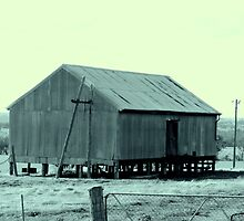 Shearing shed by Caroline Scott