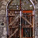 The Door by Cathie Tranent