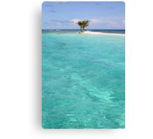Three Palm Island 2 Canvas Print