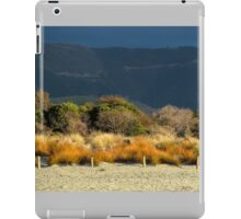 Late Afternoon Colours iPad Case/Skin