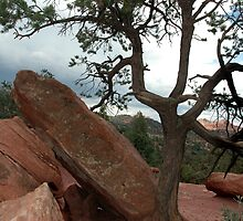 Life In The Garden Of The Gods by Holly Werner