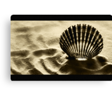 Shell Shocked Canvas Print