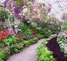Conservatory at Fitzroy Gardens by Susan Moss