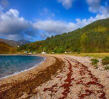 Kingairloch Loch Linnhe by Chris Thaxter