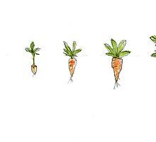 Carrots by Gareth Pugh