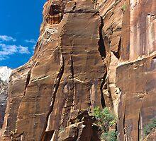 Zion National Park by Elizabeth Heath
