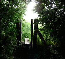 Country Stile by Andy Harris