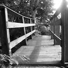 Bridge to Terabithia by Brett Yoncak